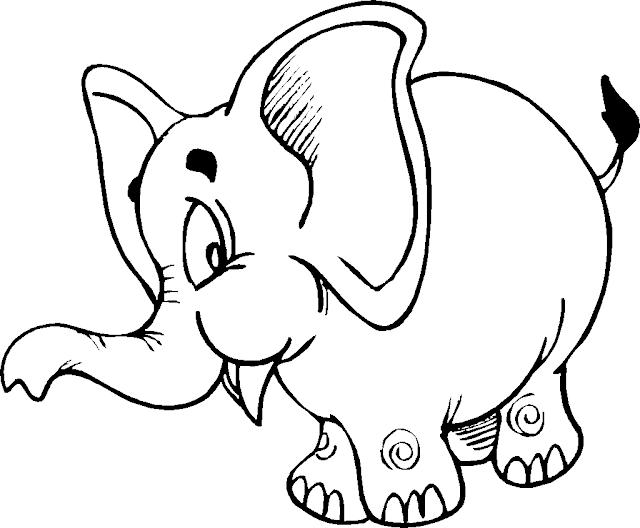 Elephant Coloring Cartoon Drawing Free wallpaper