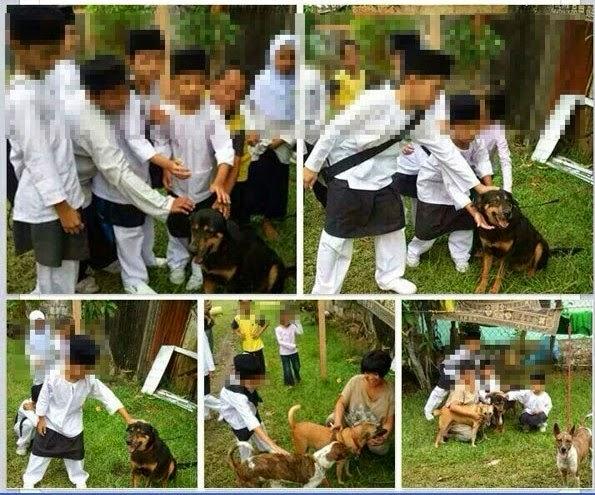 Isu Budak budak Sekolah Agama Belai Anjing JAJ Akan Siasat