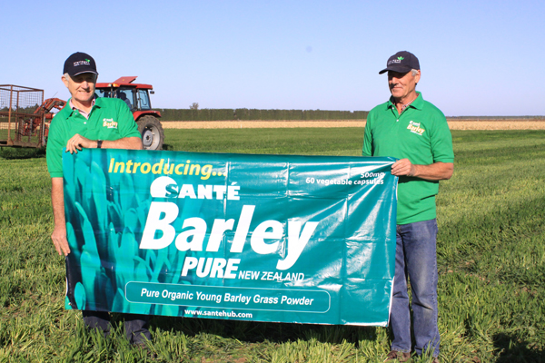 Benefits Of Pure Barley Grass Benefits Of Pure Barley