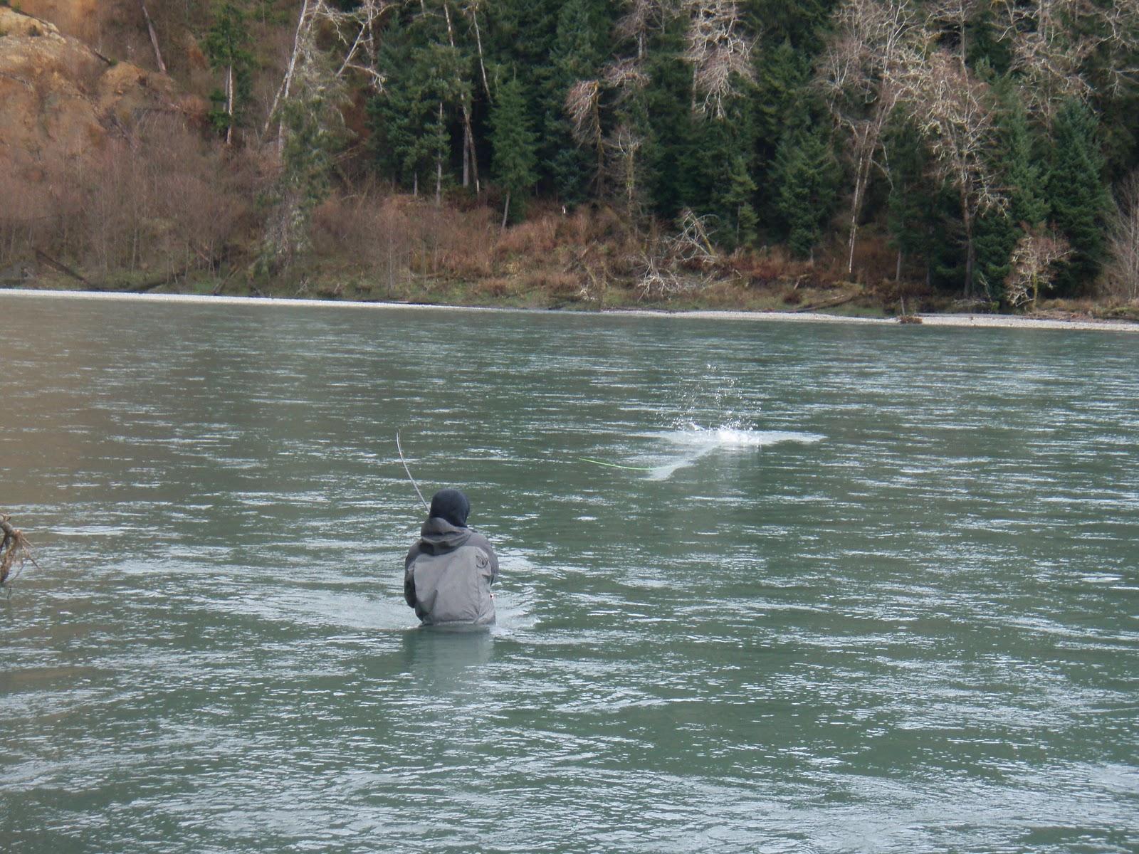 humptulips guys A small look into the best salmon & steelhead fishing on coastal washington state rivers.