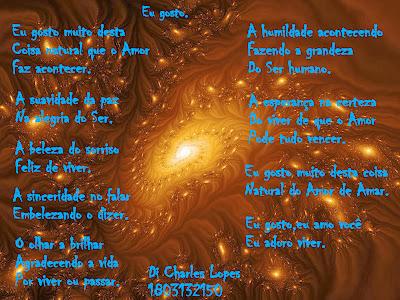 Poesia na foto (18)