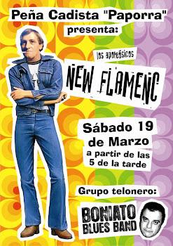 New Flamenc en concierto