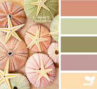 Urchin colour palette from Design Seeds
