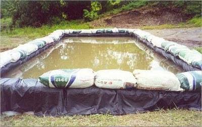 การเลี้ยงกุ้งฝอยในบ่อพลาสติก