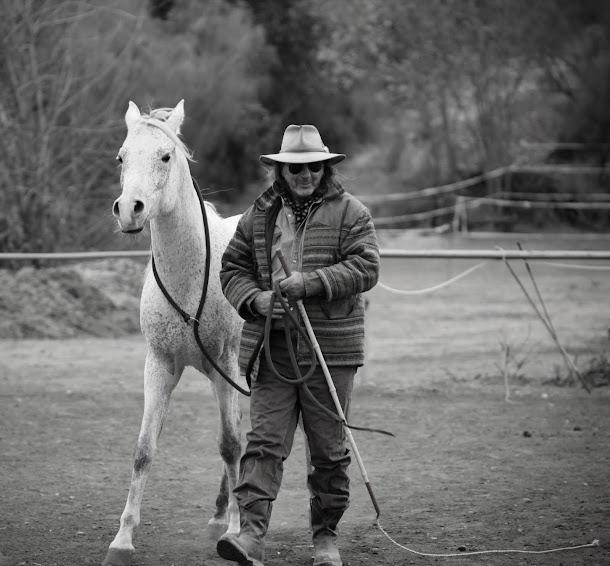 Stavros, Steve Vergis Horse Trainer / Σταυρος ( Steve )  Βεργης