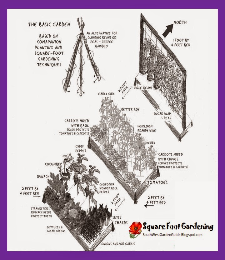 Southern california garden guide basic gardening mel bartholomew square foot garden small - Spacing planting vegetables guide ...
