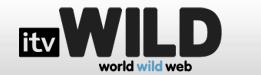 itv wild