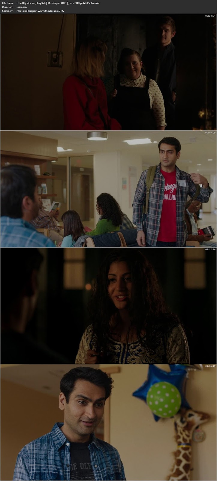 The Big Sick 2017 English Download BRRip 720p ESubs at xcharge.net