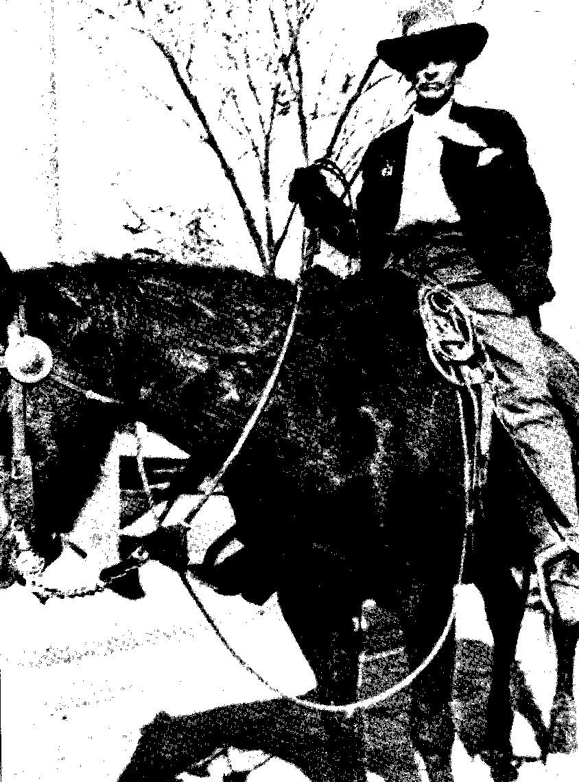 history hoydens midnight cowboys bounty hunters of the old west