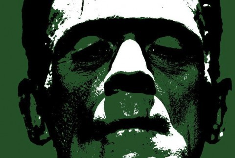 views and values in frankenstein