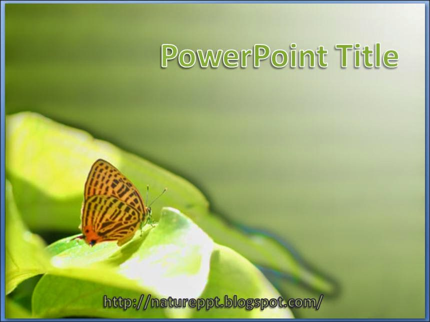 animal theme of a butterfly on top of leaf powerpoint template, Powerpoint templates