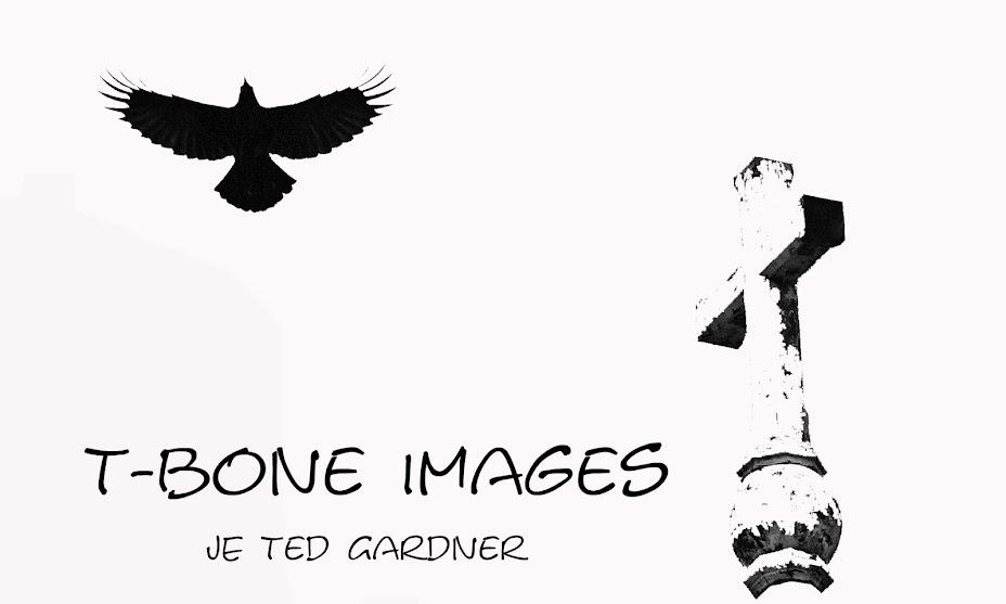 T-bone Images