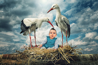 John Wilhelm is a photoholic
