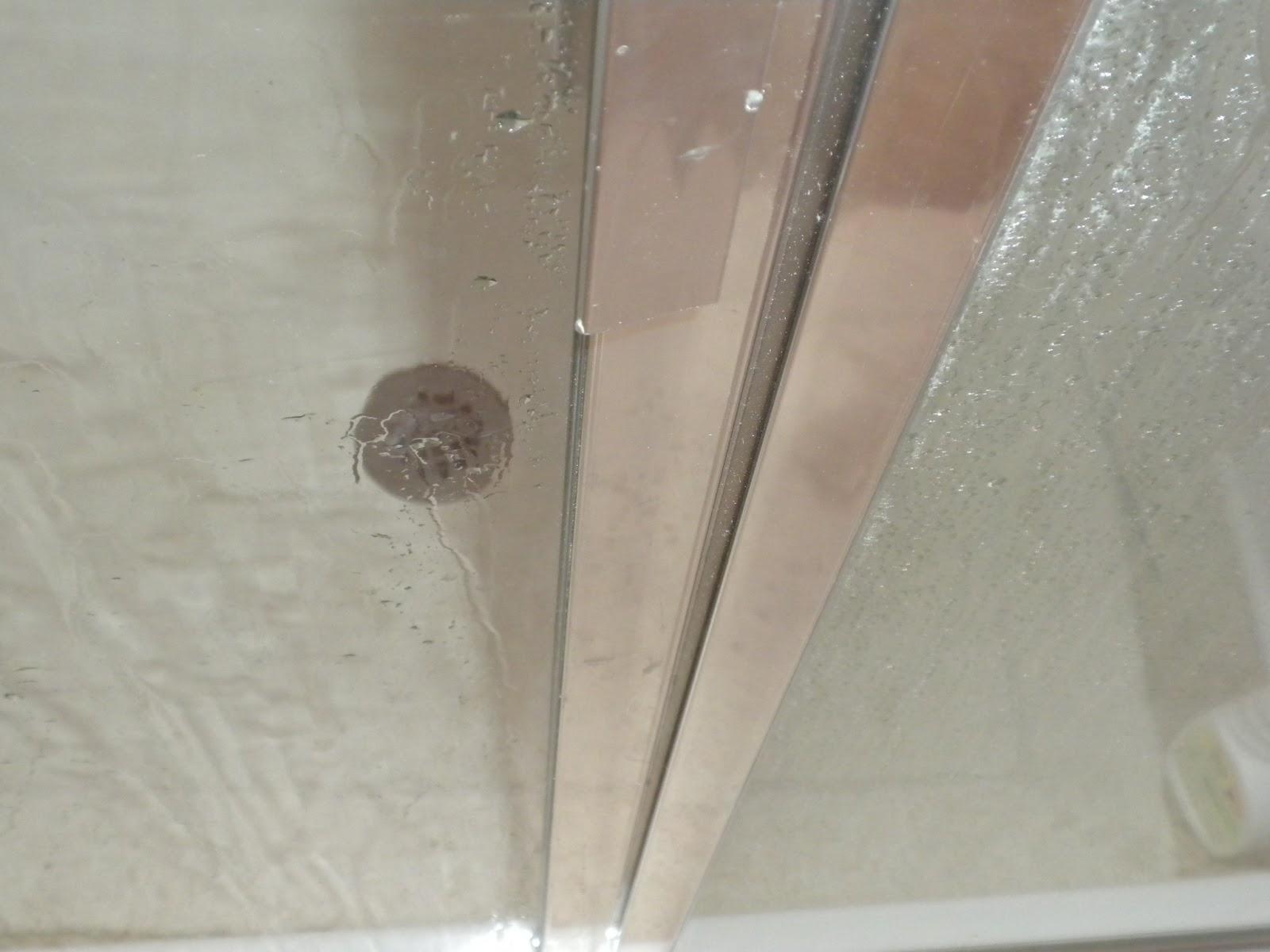 Substance of Living Homemade Shower Cleaner