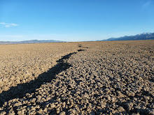 The Mysterious Cracks in the Alkali Lake