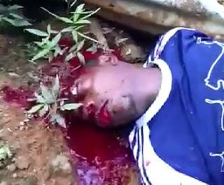 Brutales Asesinatos de Narcos