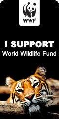 WWF Internazionale