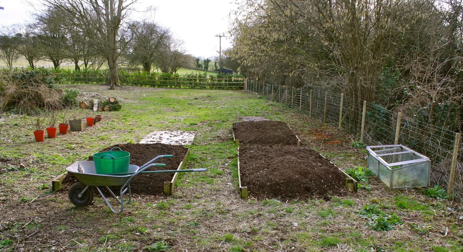 veggie garden ash cottage