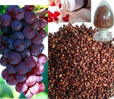 manfaat ekstrak biji anggur