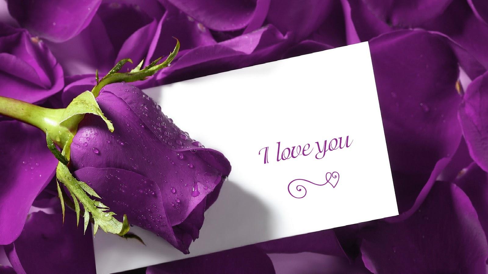 http://2.bp.blogspot.com/-1tRAdDyNB4M/UQdl2YqNYJI/AAAAAAAAALI/W3Aeob8p-9I/s1600/valentines%2Bday%2Bsms%2Bmessage%2Bwishes.jpg
