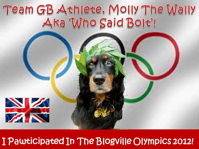 Molly The Wally & The London 2012 Olympics.