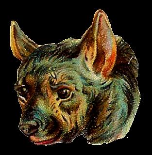 digital hyena clip art