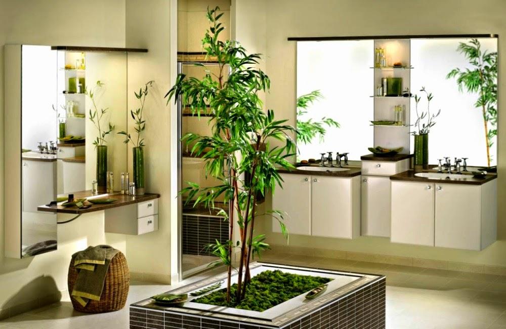 Plante Bambou Salle De Bain – Votre inspiration à la maison