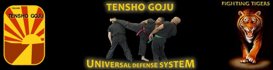Tensho Goju Universal Martial Arts Netwok