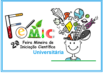 Informações de participação FEMIC universitária