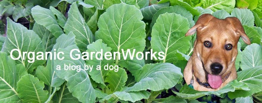 Organic Garden Works