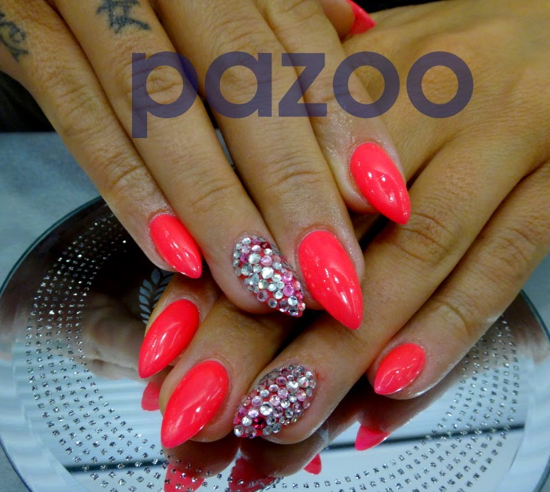 Pazoo Blog Listopada 2014