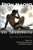 From Macho to Mariposa: New Gay Latino Fiction