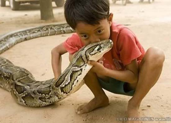 3 Δείτε:Σοκαριστικές εικόνες με παιδιά και επικίνδυνα ζώα!!!