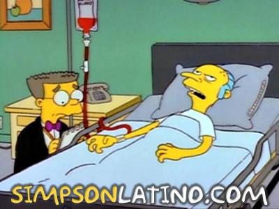 Los Simpson 2x22