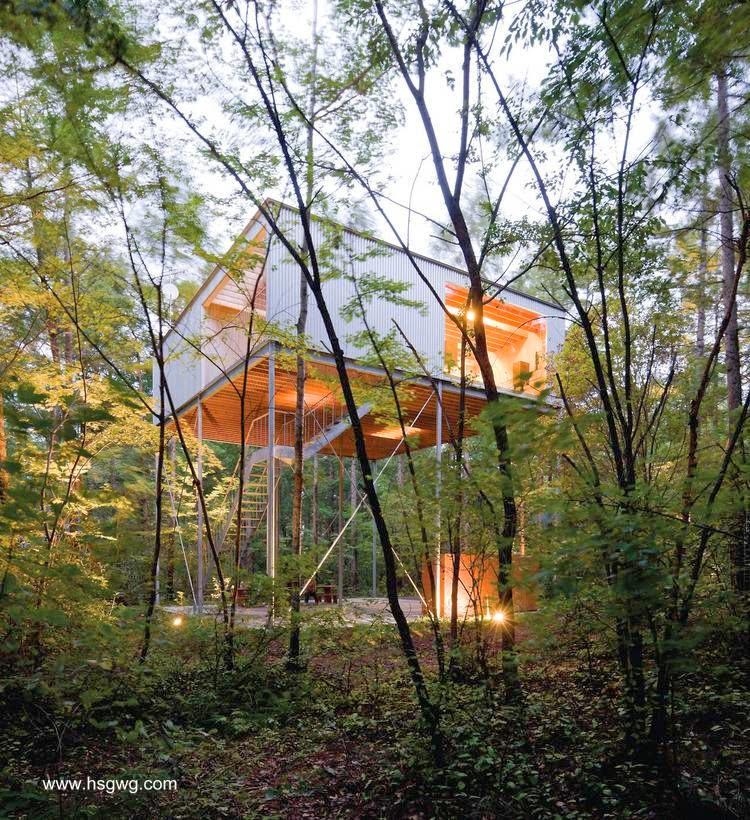 Moderna casa japonesa de metal y madera entre árboles