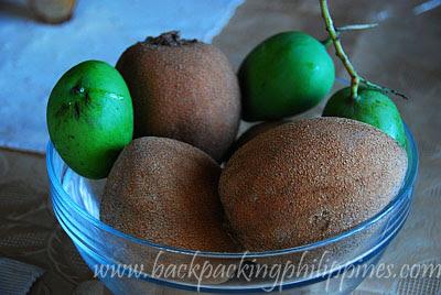 fruit chico mamei zapote de carne sapodilla sapote