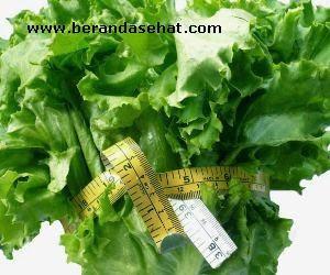 alasan-gagal-diet