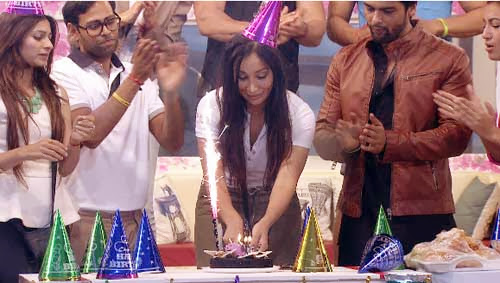Sofia's birthday celebration