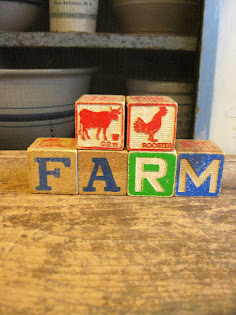 down on the farm blocks