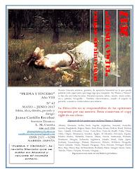 Revista nº 42 - Mayo-Junio 2017 - Año VIII