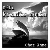 Dfi premier roman
