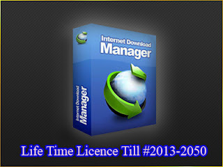 Internet Download Manager(IDM)2013