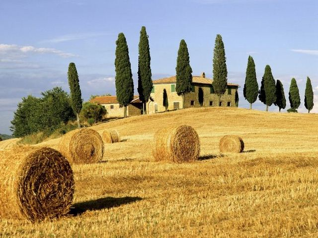 Tuscany hay fields photo