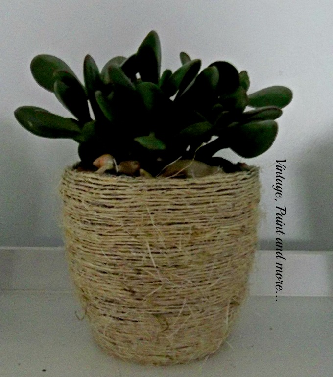 Succulents in Dollar Store Pots - jade plant, twine covered flower pot, succulent gardening, using succulents in the decor