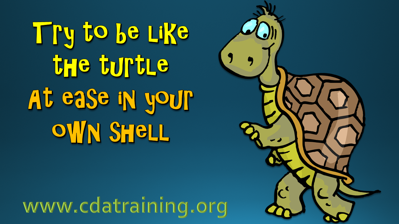 try to be like the turtle at ease in your own shell
