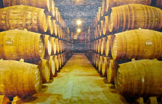 Port wine cellars photo by Joao Pires