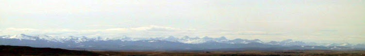 The Rocky Mountains seen from Calgary