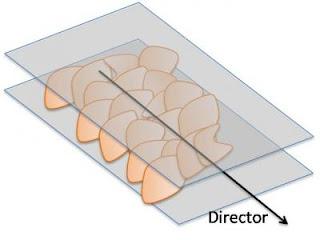 Graphene oxide flakes