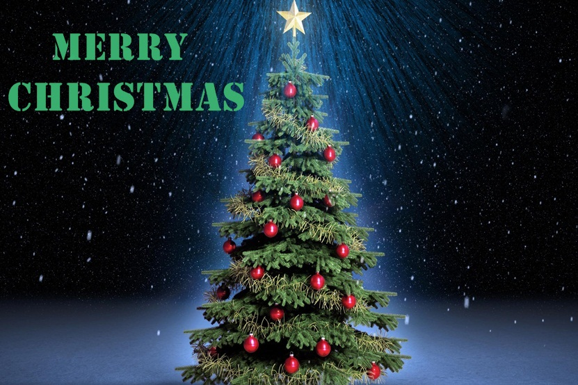 Beautiful Christmas Tree Images Part - 37: Christmas HD Tree Image