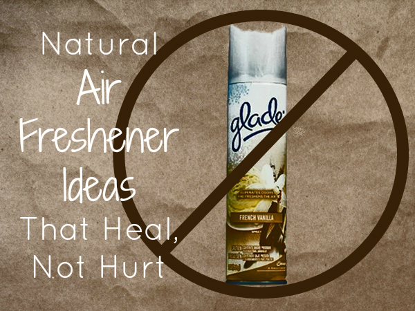 bathroom air freshener ideas. seven natural air freshener ideas that heal, not hurt bathroom